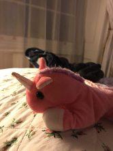 unicornio15