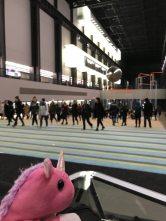 unicornio9